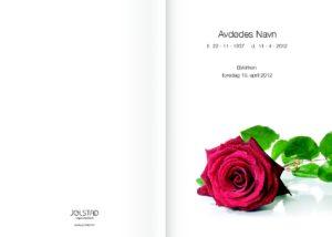 Stor rose på programheftet tilbys av Jølstad